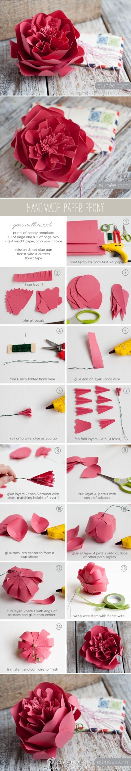 Inspirational Monday - Do it yourself (diy) Flower series - paper peony flower tutorial mypapercrafting