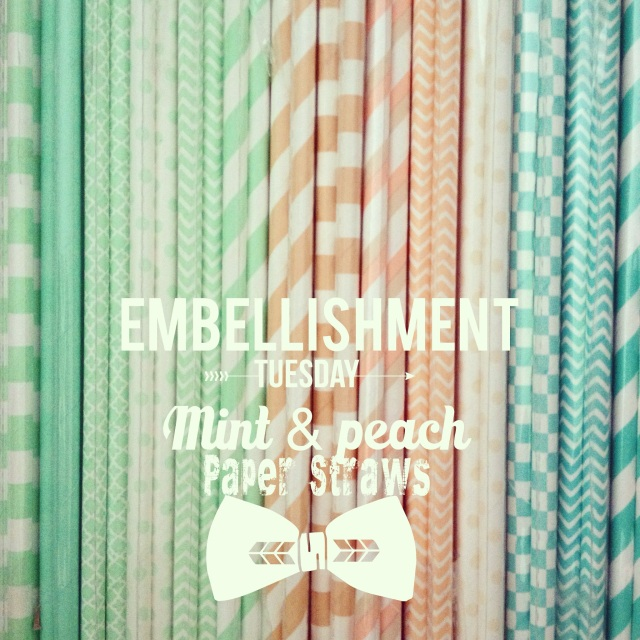 Mint & Peach Paper Straws